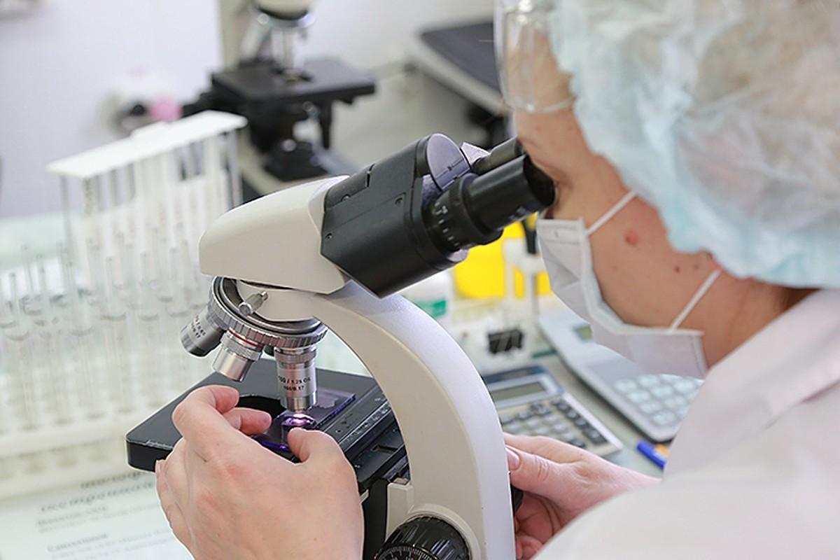 В России обнаружили южноафриканский штамм коронавируса