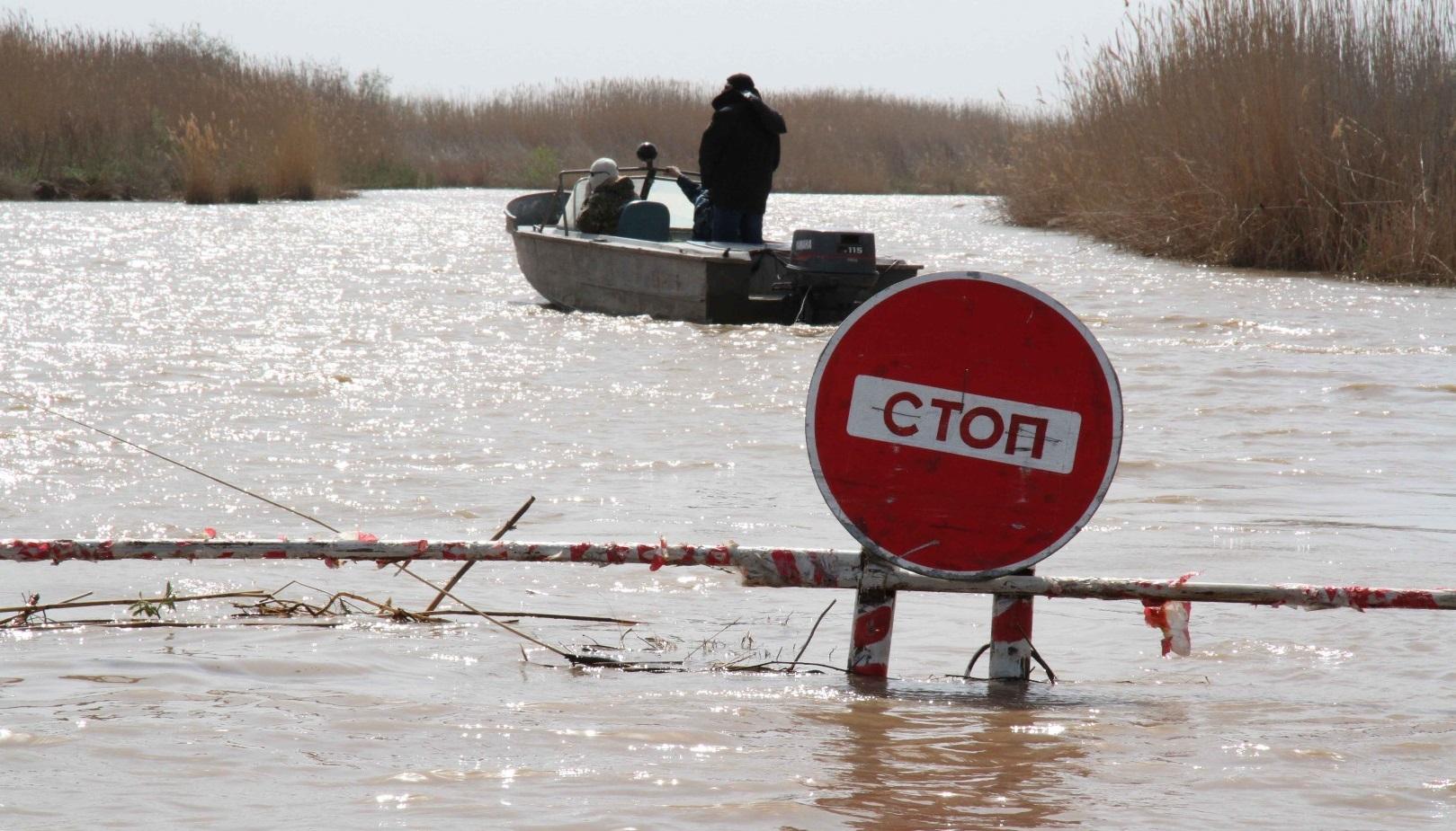Донским рыбакам запретили вылов трех видов рыбы