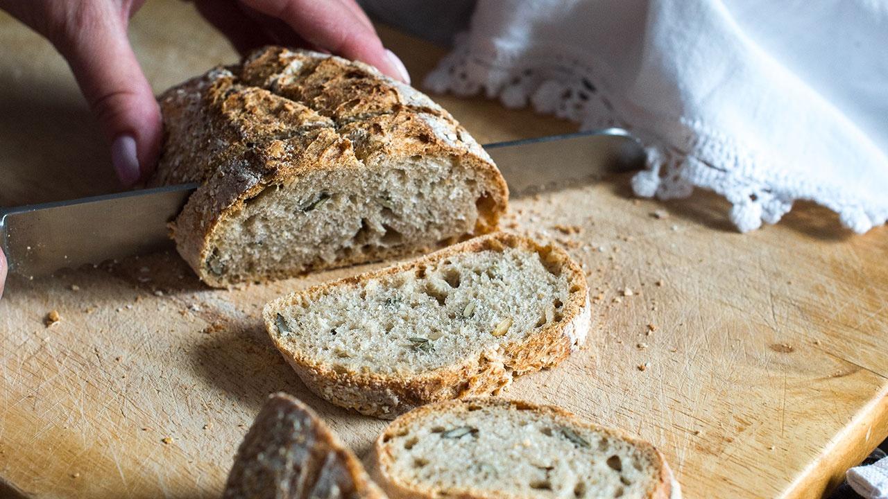 В России появятся мясо и хлеб из белка насекомых
