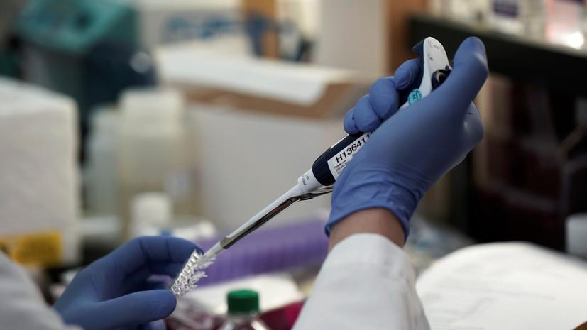 В ВОЗ предупредили об устойчивости индийского штамма COVID-19 к антителам