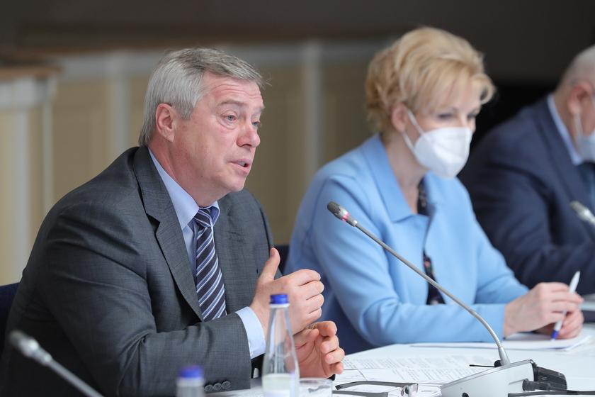 Губернатор обсудил с активистами ОНФ итоги работы с обращениями граждан к президенту