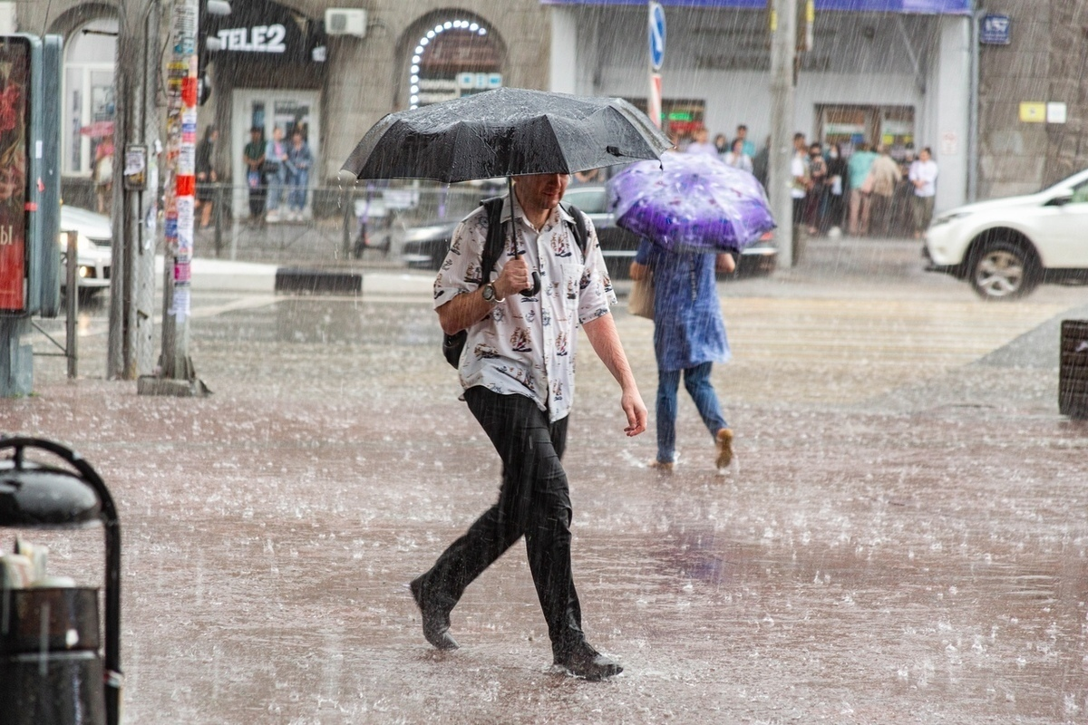 Дожди с грозами ожидаются Ростовской области на выходных