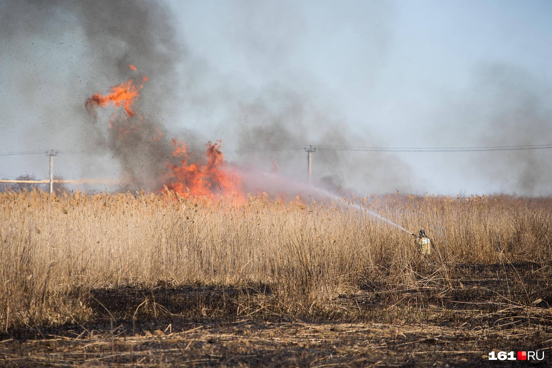 В Ростовской области объявили штормовое предупреждение из-за пожароопасности