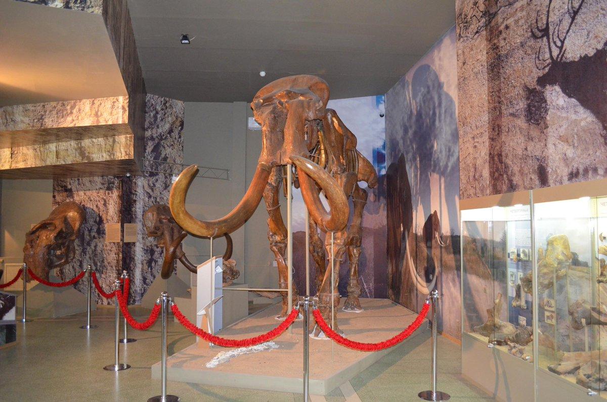 В Азовском музее пройдет день льготного посещения