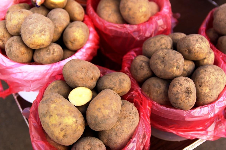 Стоимость картофеля в Ростовской области может увеличится до 80 рублей