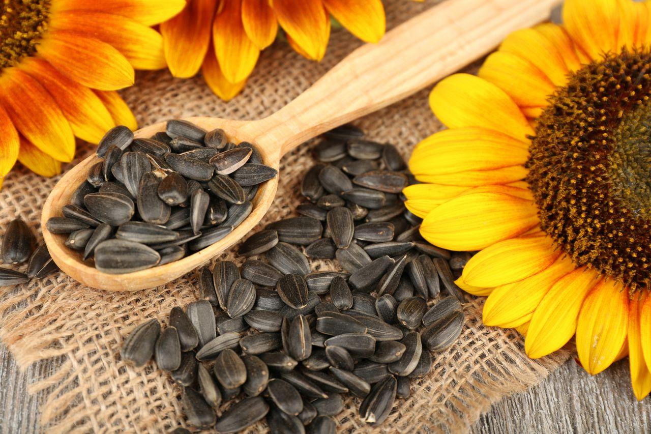 Диетолог рекомендовала ограничить употребление подсолнечных семечек