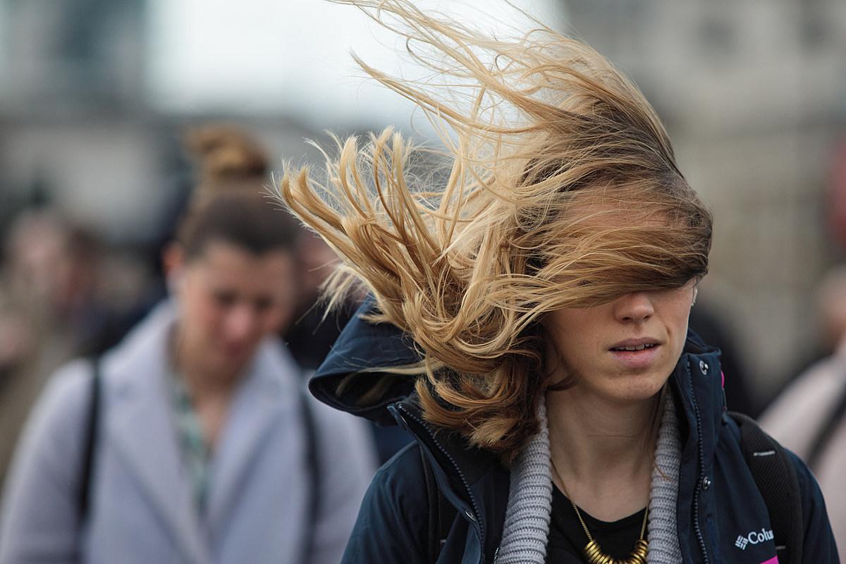 В Ростовской области прогнозируют сильный ветер